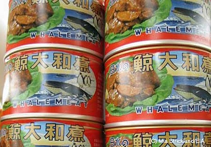 whale-meat-tins-from-tesco-s-j