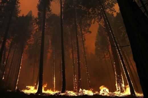Justin Sullivan - buck-meadows-fire.photoblog900