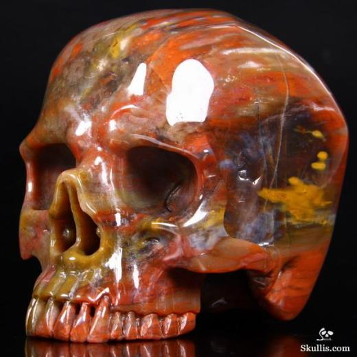 Petrified-Wood-Crystal-Skull-01