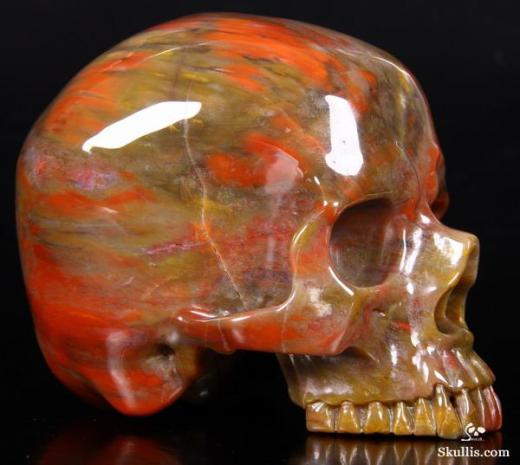 Petrified-Wood-Crystal-Skull-03