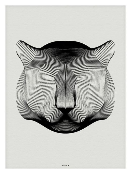 Animals-Drawn-with-Moire-Patterns4